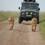 Planning for a Safari