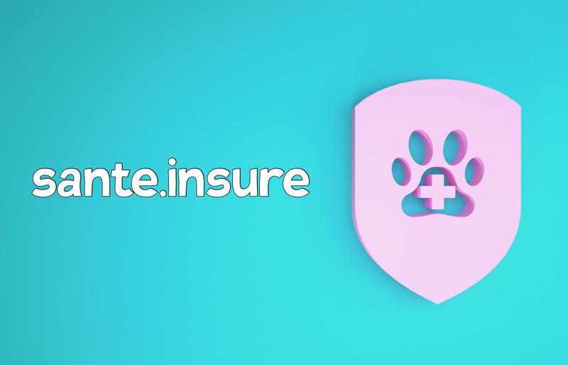 страховка животных, страхование