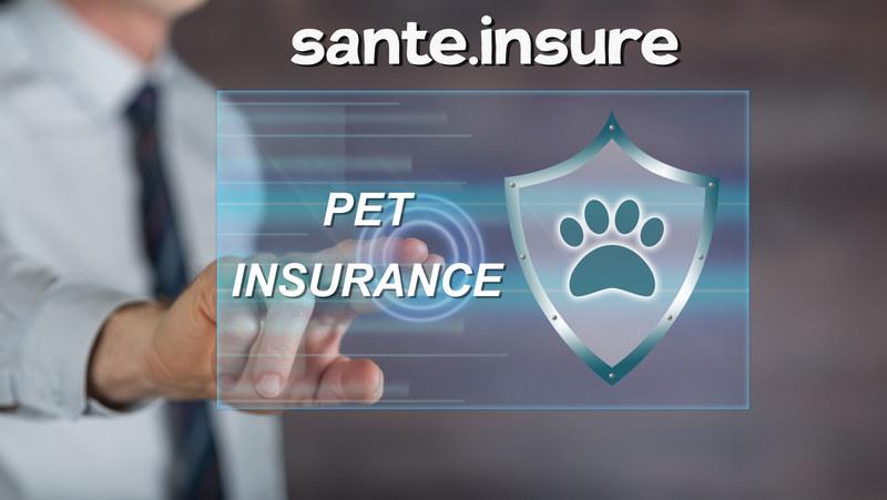 страхование, риски